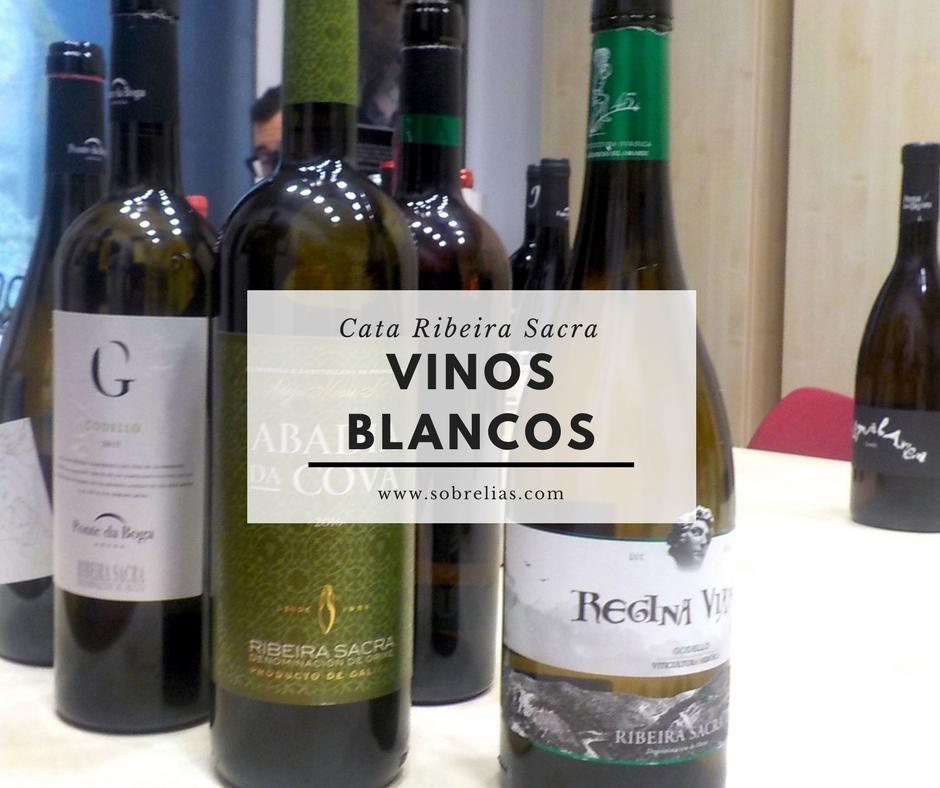 Cata Ribeira Sacra Vinos Blancos