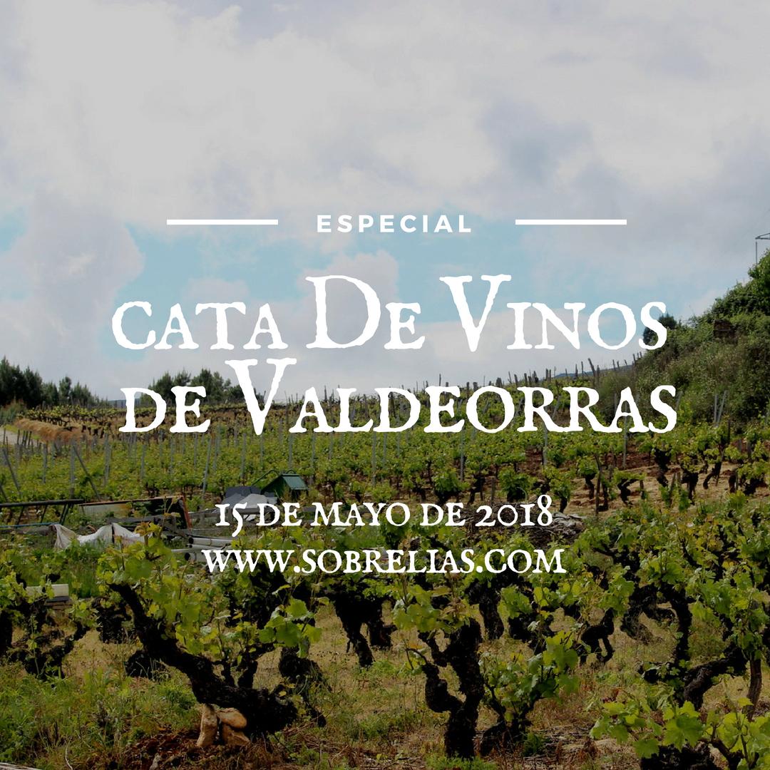 Especial cata de vinos de Valdeorras