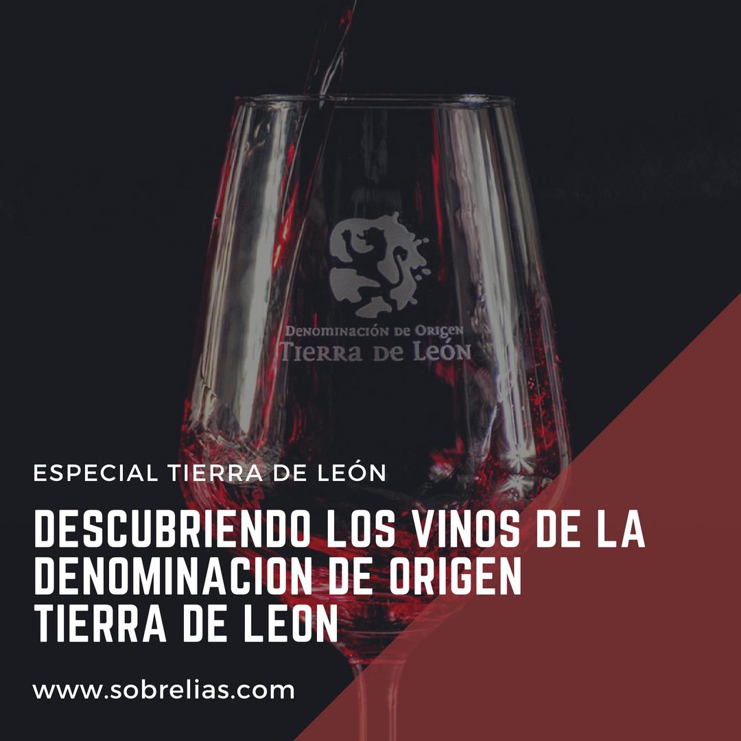 Descubriendo los vinos de la Denominación de Origen Tierra de León