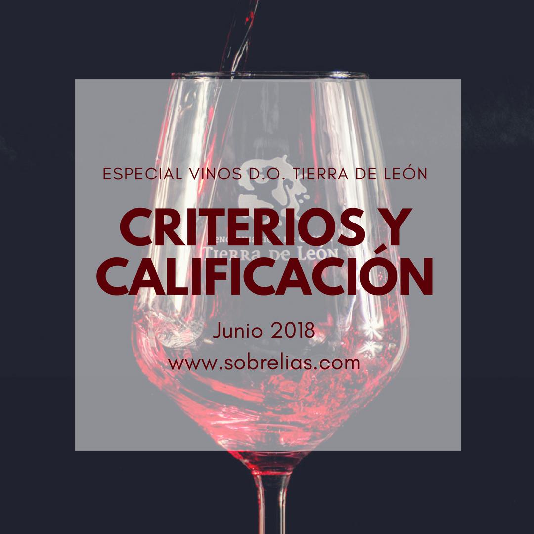 Cata de los vinos de DO Tierra de León, Criterios y Calificación