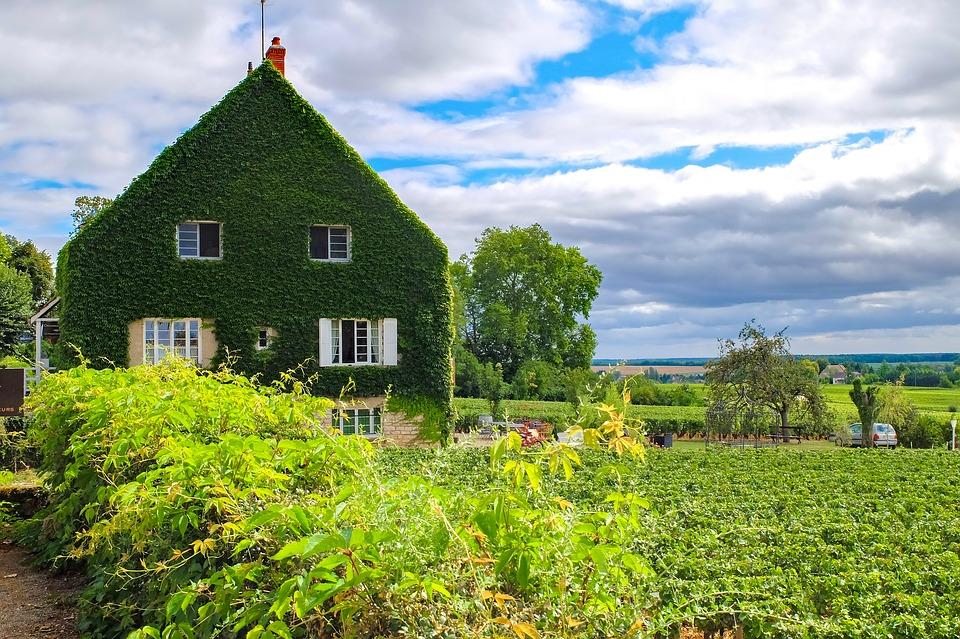 Borgoña exporta por primera vez más de 1.000 millones de euros