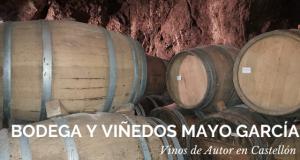 Bodega y Viñedos García Mayo