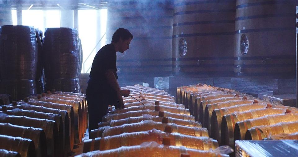 Qué aporta el roble americano a los vinos