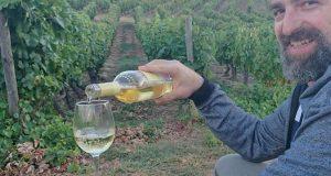 Juan José Tarud Wines