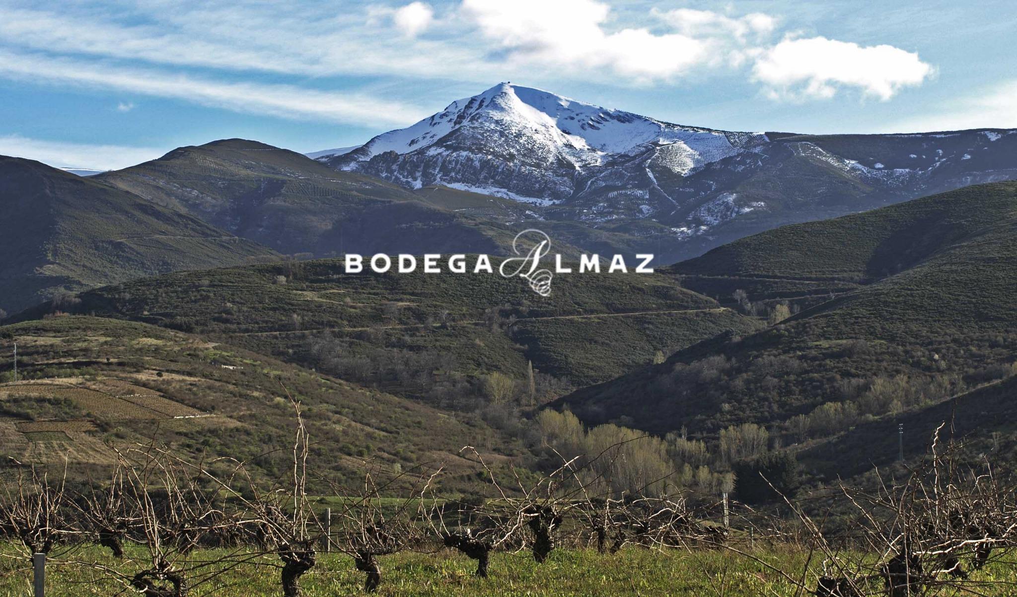 Bodega Almaz