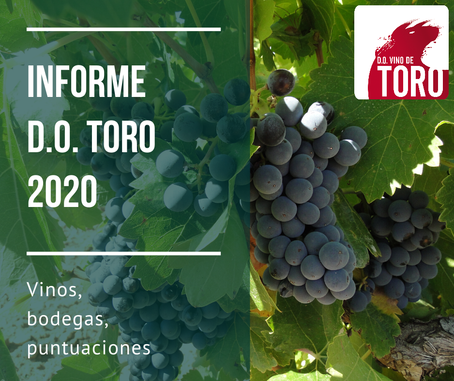Informe Toro