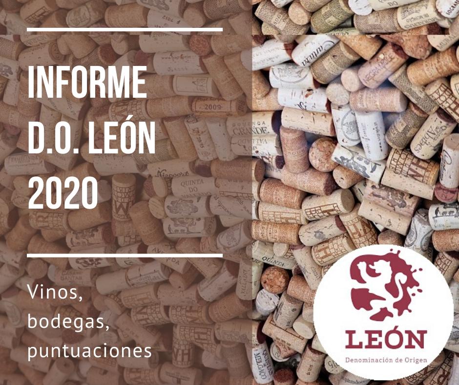 Informe DO León