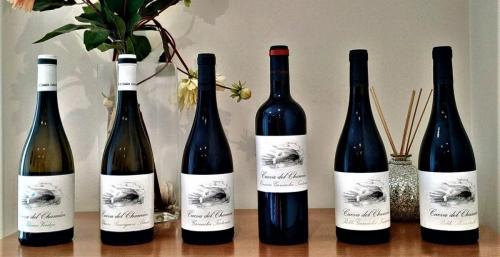 vinos cueva del chaman (1)