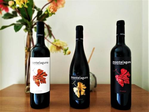 vinos de dehesa valdelaguna